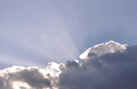 Sunbeams in Hobart Tasmania