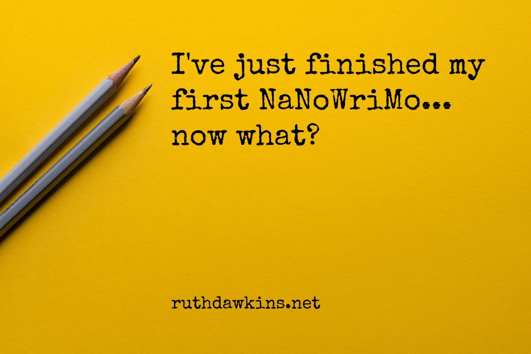 Caption 'I've just finished my first NaNoWriMo... now what?' on yellow background